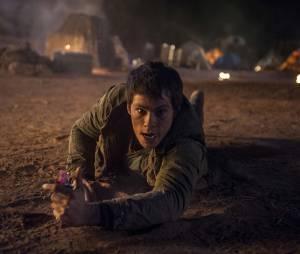 Dylan O'Brien dans Le Labyrinthe 2
