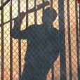 The Walking Dead saison 7 : Negan plus inquiétant que jamais dans un teaser