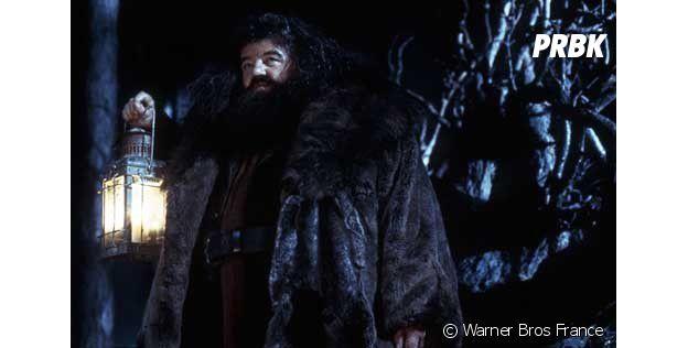 Harry Potter : une doublure pour Hagrid