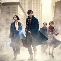 Harry Potter : un personnage culte de la saga de retour dans Les Animaux Fantastiques