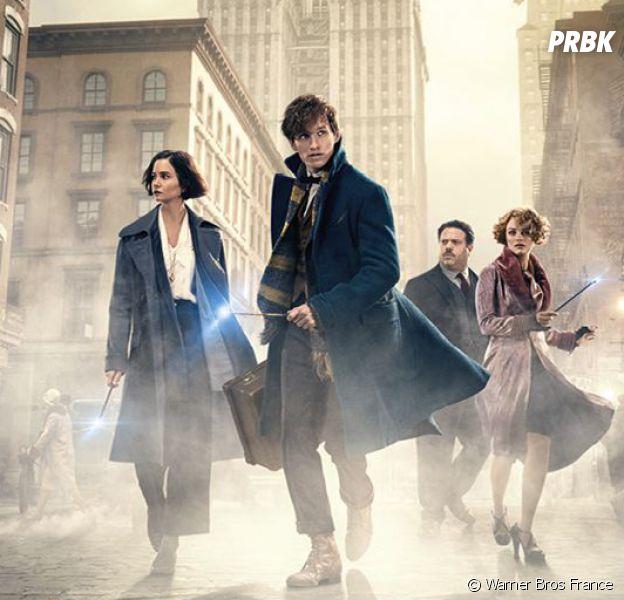 Les Animaux Fantastiques : un personnage culte d'Harry Potter de retour