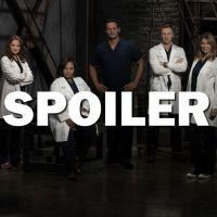 Grey's Anatomy saison 13 : Jo et Andrew bientôt en couple ? La réponse de Camilla Luddington