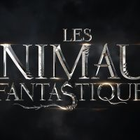 Les Animaux Fantastiques 2 : un casting est lancé pour incarner Dumbledore jeune