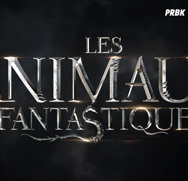 Les Animaux Fantastiques : un casting est lancé pour incarner Dumbledore jeune