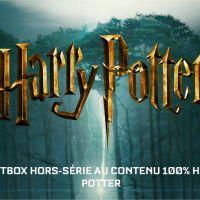 Harry Potter : une box très limitée arrive bientôt chez Wootbox