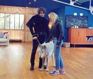 Danse avec les Stars 8 : la présence d'un loup pendant les répétitions a fait polémique