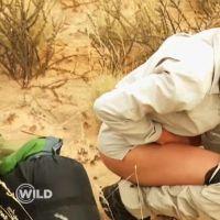 WILD : nouvelle séquence dégradante pour Samantha, les abandons de Bruno et Robin critiqués
