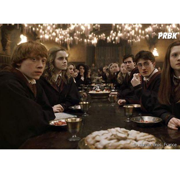 Harry Potter : deux nouveaux livres vont sortir pour les 20 ans de la saga !
