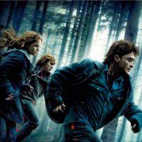 Harry Potter : 10 secrets que seuls les vrais fans connaissent
