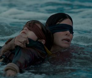 Bird Box Challenge, Tide Pod Challenge : Youtube interdit les défis dangereux