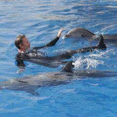 Confinement : un sentiment proche de ce que ressentent les animaux dans les zoos et aquariums ?