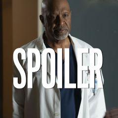 Grey's Anatomy saison 17 : quelle suite pour Richard ? James Pickens Jr donne ses idées