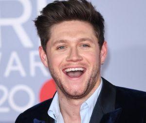 Niall Horan aurait retrouvé l'amour