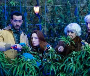 Family Business saison 2 : les acteurs fument-ils vraiment de la weed ? Jonathan Cohen répond