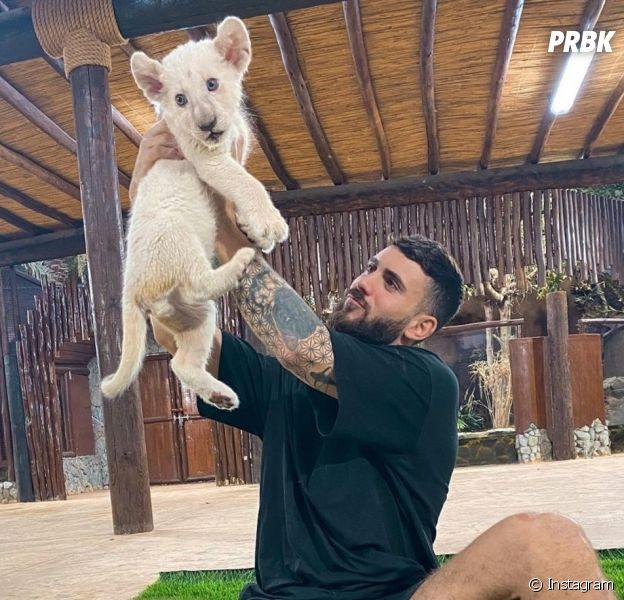 Illan (Les Marseillais) accusé d'exploiter des animaux sauvages : Hugo Clément le recadre, il réagit