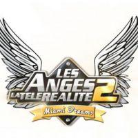 Les Anges de la télé réalité 2 : épisode 5 sur NRJ12 ... Pamela Anderson à la villa