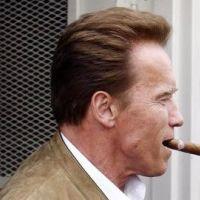 Arnold Schwarzenegger : de retour au cinéma ... trois nouveaux rôles