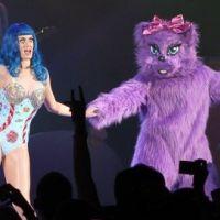 Katy Perry ... son plus beau cadeau d'anniversaire : vos dons pour les animaux
