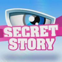 Secret Story 6 : come-back en mai pour Benjamin Castaldi et la Voix ?