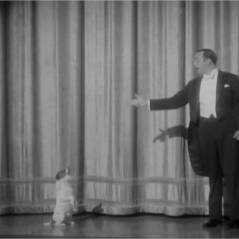 The Artist - Bref invite Uggie : le chien veut ses croquettes ! Ouaf ouaf (VIDEO)
