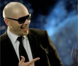 Pitbull, c'est lui !