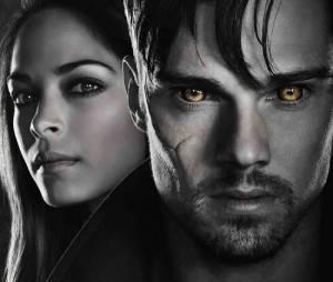 Beauty and the Beast aura peut-être 3 nouveaux épisodes