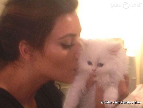 Kim Kardashian a le coeur brisé après la mort de son chat !