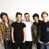 """One Direction : """"Artiste 2012"""" selon MTV ! Découvrez le top 10"""
