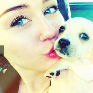 Miley Cyrus : un nouveau chien après la mort de Lila ! (PHOTOS)