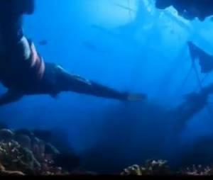 Les fonds sous-marins des Caraïbes pour décors.