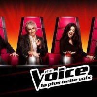 The Voice 2 : Stephan Rizon, Dave, Nicola Sirkis... pluie de critiques contre le show