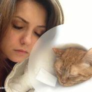 Ian Somerhalder et Nina Dobrev : voyage express aux urgences pour... leur chat