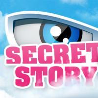 Secret Story saison 7 : tous les vendredis soirs sur TF1