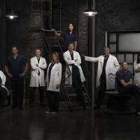 Grey's Anatomy saison 10, Castle saison 6 : les dates de retour des séries de ABC