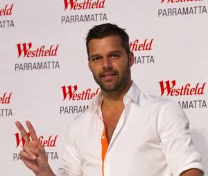 Ricky Martin a connu le succès en 1995 avec son single Maria (Un, dos, tres)