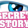 Secret Story reviendra en 2014