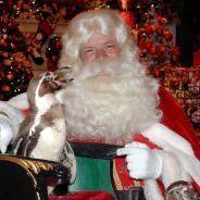 Le Père Noël accusé d'attouchement sexuel sur une Elfe