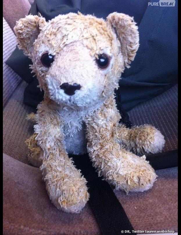 Roar, l'ours en peluche a retrouvé sa propriétaire grâce à Internet