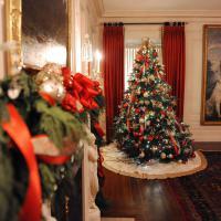 Cadeaux, chocolats, Mère Noël... la journée idéale de Noël en GIFs
