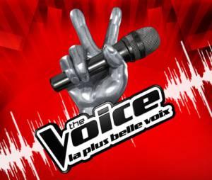 The Voice bientôt concurrencé par Prodiges, le nouveau télé-crochet de France 2 ?