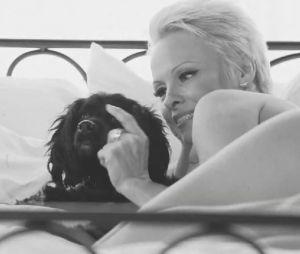 Pamela Anderson entièrement nue dans la nouvelle campagne de la PETA pour la Saint-Valentin