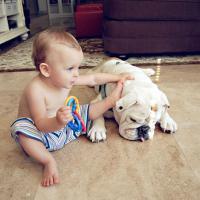 [CUTE] L'émouvante histoire d'amitié entre une petite fille et son bulldog