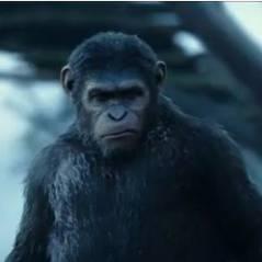 La Planète des singes 2 : tensions et émotion dans une bande-annonce sombre