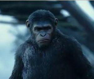 La Planète des singes 2 : bande-annonce sombre avec Andy Serkis et Jason Clarke