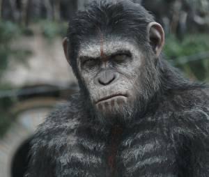 La Planète des singles, l'affrontement : Andy Serkis toujours dans la peau de César
