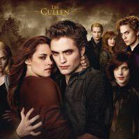 Twilight : une suite en 5 courts métrages... avec Kristen Stewart !
