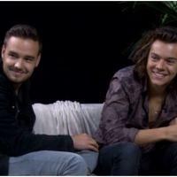 Harry Styles bisexuel ? Nouvelles rumeurs après une interview