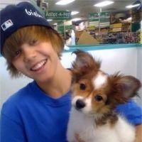 Justin Bieber en deuil : son chien Sammy est mort