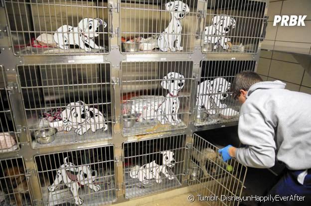 Les 101 Dalmatiens DisneyunHappilyEverAfter