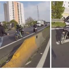 Touchant : quand de gros bikers sauvent un chien en danger sur l'autoroute